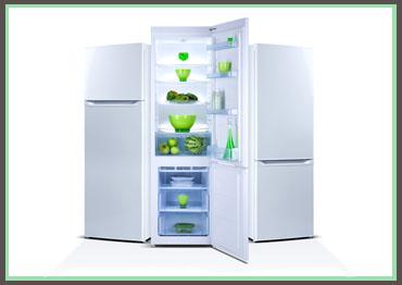 refrigerator repair tampa florida
